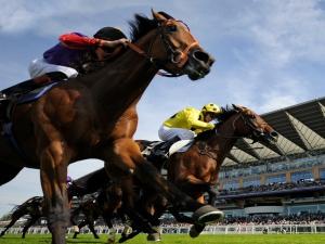 horse-race-2